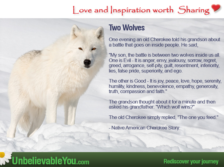 A Native American Cherokee Story – Two Wolves : UnbelievableYou